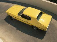 thumbnail image of Ford Mustang 1973