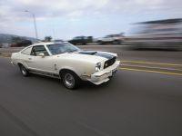 thumbnail image of 1976 Ford Mustang