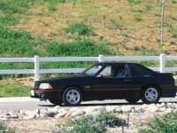 Ford Mustang 1987, 1 of 2