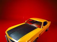 Ford Mustang Boss 302 1969, 1 of 3