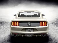 Ford Mustang GT 50 Year Limited Edition , 8 of 25