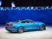 thumbnail image of Ford Mustang GT350 R Detroit 2015