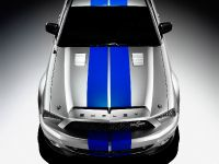 Ford Mustang Shelby GT500KR, 5 of 18