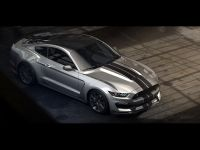 Ford Shelby GT350 Mustang, 3 of 6