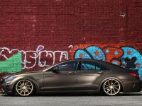 Fostla Mercedes-Benz CLS 350 CDI W218, 7 of 18