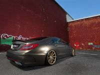 Fostla Mercedes-Benz CLS 350 CDI W218, 12 of 18
