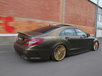 Fostla Mercedes-Benz CLS 350 CDI W218, 13 of 18
