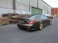 Fostla Mercedes-Benz CLS 350 CDI W218, 14 of 18