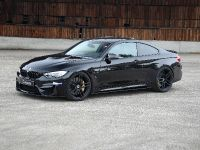 G-Power BMW M3 F82 Bi-Tronik, 5 of 11