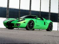 Geiger HP790 Ford GT, 1 of 8
