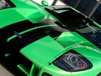 Geiger HP790 Ford GT, 7 of 8