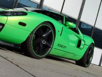 Geiger HP790 Ford GT, 8 of 8
