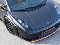 Genuine Carbon Lamborghini Gallardo, 3 of 3