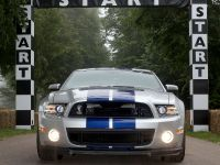 Goodwood 2013 Ford Mustang Shelby GT500, 3 of 3
