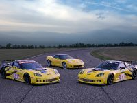 GT2 Chevrolet Corvette C6.R, 25 of 25