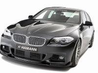 Hamann BMW 5 Series F10, 2 of 21