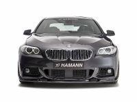 Hamann BMW 5 Series F10, 6 of 21