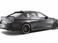 Hamann BMW 5 Series F10, 8 of 21