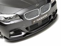 Hamann BMW 5 Series F10, 12 of 21