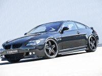 HAMANN BMW 6-series, 12 of 16