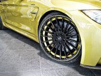 Hamann BMW M4 F82, 7 of 9