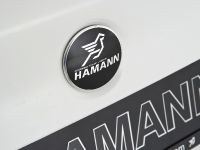 Hamann BMW M5, 20 of 38