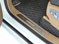 Hamann Guardian Evo Porsche Cayenne II, 26 of 30