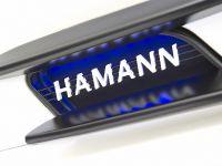 Hamann Hawk Mercedes SLS AMG White, 25 of 26