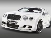Hamann Bentley Continental GT Imperator, 29 of 34