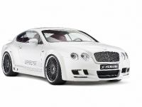 Hamann Bentley Continental GT Imperator, 28 of 34