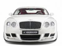 Hamann Bentley Continental GT Imperator, 23 of 34