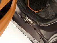 HAMANN TYCOON EVO BMW X6 M, 18 of 20