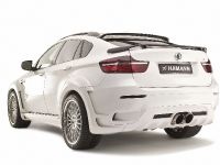 HAMANN BMW X6 TYCOON EVO, 13 of 32
