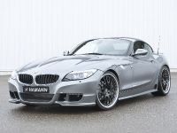 HAMANN BMW Z4 sDrive35i, 1 of 20