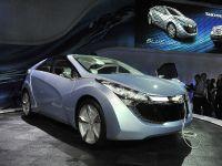thumbnail image of 2010 Hyundai Blue-Will Detroit