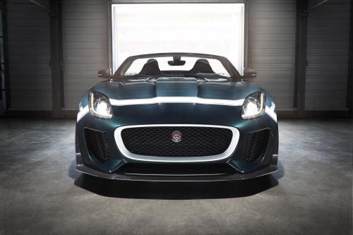На Jaguar D-типа ведет парад на 2014 Гудвуд Возрождение