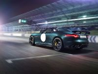 Jaguar F-TYPE Project 7, 14 of 23