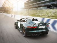 Jaguar F-TYPE Project 7, 15 of 23