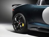 Jaguar F-TYPE Project 7, 21 of 23