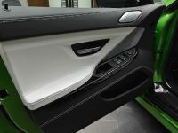 Java Green BMW M6 Gran Coupe, 18 of 18