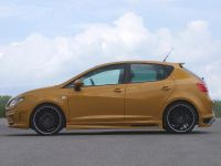 JE Design Seat Ibiza 6J Gold, 4 of 6