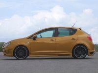 JE Design Seat Ibiza 6J Gold, 4 of 6