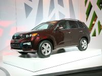 thumbnail image of 2010 Kia at New York