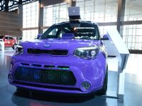 thumbnail image of Kia Soul Chicago 2014