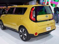 thumbnail image of Kia Soul New York 2013