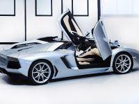 Lamborghini Aventador LP 700-4 Roadster, 10 of 27