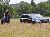 Larte Design Mercedes-Benz GL Black Crystal Movie , 3 of 9