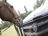 Larte Design Mercedes-Benz GL Black Crystal Movie , 9 of 9