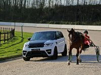 Larte Design Range Rover Sport Winner , 15 of 17