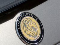 Loewenstein Mercedes-Benz E-LM63-700, 13 of 13